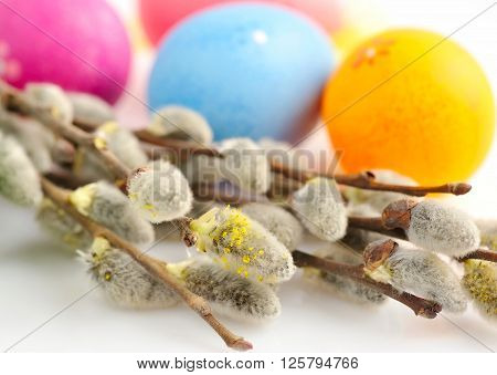Branches Of Willow And Colorful Easter Eggs On White Background