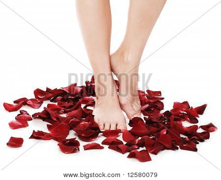 Spa Feet and Rose Petals.Isolated on white