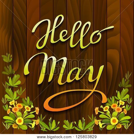Floral hand drawn calligraphy card - hello May. Spring orange yellow primrose flowers, green leaves on brown wooden texture background. Floral border frame and vector lettering. Wood boards background