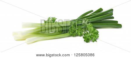 Green spring onion parsley horizontal isolated on white background as package design element