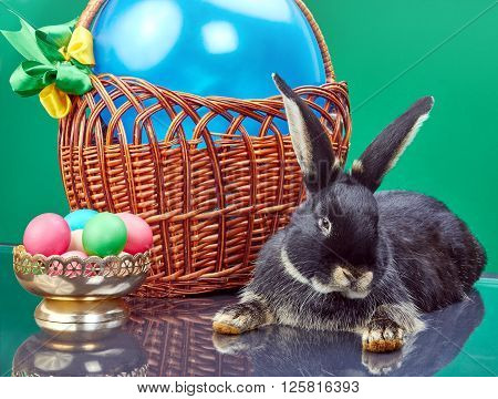 On a green background beautiful bunny near Easter basket and vase with eggs