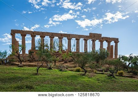 Greek Temple in Agrigento Sicily Italy - on the background a clear blue sky