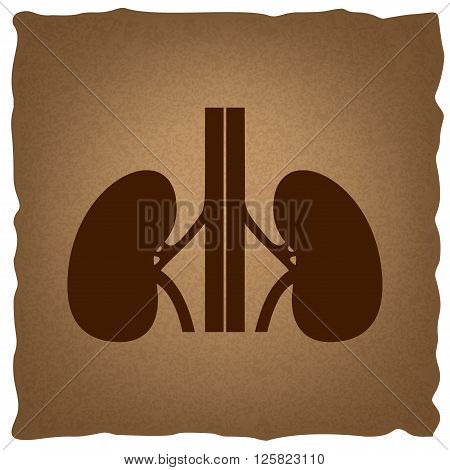 Human kidneys sign. Coffee style on old paper.