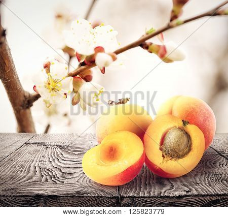Apricots lie on wooden table against background apricot flowers