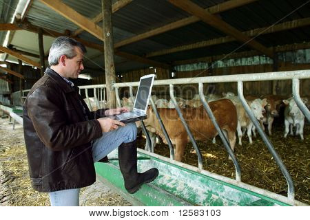 Farmer with a phone and a laptop computer