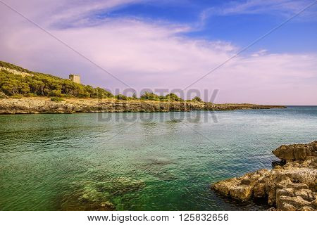 SALENTO. Bay Porto Selvaggio:in the background Dell'Alto watchtower.ITALY (Apulia).The coast is rocky and jagged, and characterized by pine woods and Mediterranean bush.