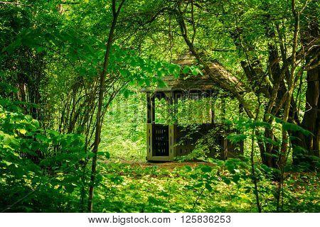Old wooden gazebo in green summer garden park forest. Garden pergola with forest in background.