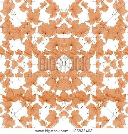 Nature Mosaic Motif Pattern