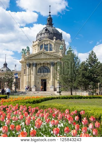 Budapest Hungary. April 19 2015: Szechenyi Baths building with tulips in the fron in Budapest in Hungary.