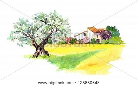 Rural provencal house and yellow field -wheat, sunflower- in Provence, France. Watercolor