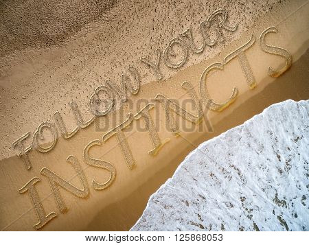 Follow Your Instincts written on the beach