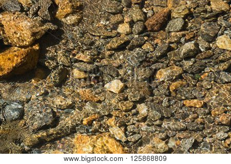 Crystal Clear Creek with Rocky Bottom in the Great Smoky Mountains