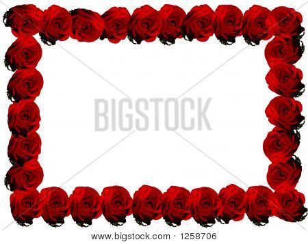 Red Rose Frame