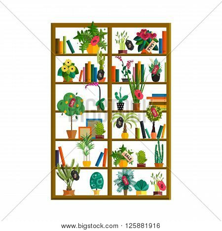 Seamless pattern of cactuses and succulents in pots on a shelves. Indoor plants on the shelves isolated on white background. Natural background of indoor plants in a flat style. Vector illustration.