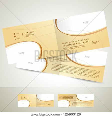 brochure design template booklet biege curve line