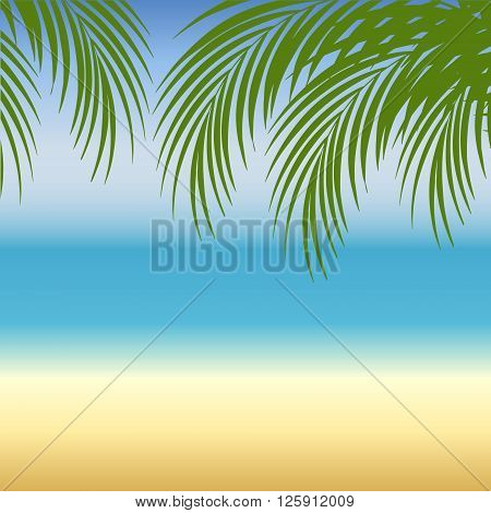 Beach background with sea sand and palm trees