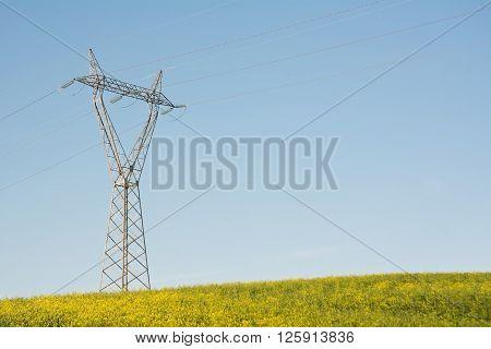 The Electric Pylon on green hill in blu sky