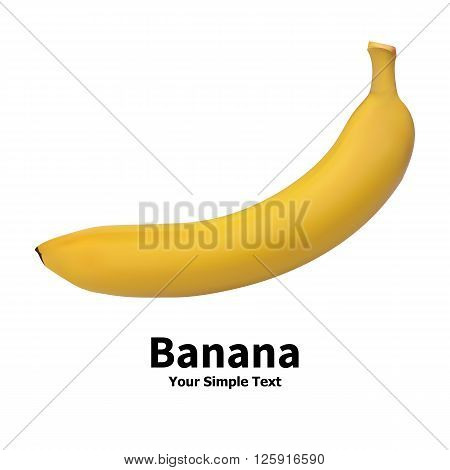 Vector illustration of realistic banana fruit isolated on a white background with an inscription.