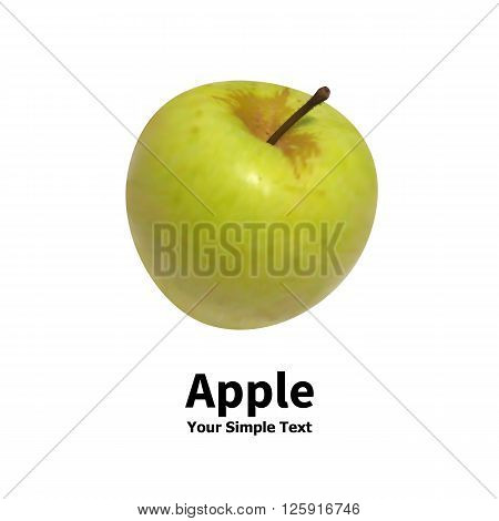 Vector illustration of an isolated realistic green apple fruit on a white background with an inscription.
