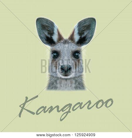 Cute head of wild Australian mammal on beige background.