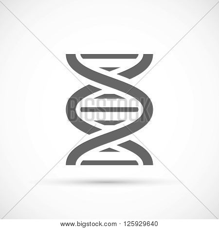 DNA Helix Icon. DNA molecule icon on white background