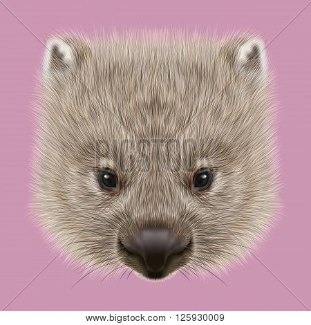 Cute face of Australian mammal on pink background.