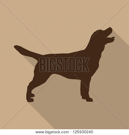 Icon dog in brown on a biege background in a flat design