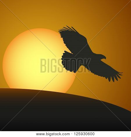 Sunset With A Silhouette Of An Eagle. Vector Illustration
