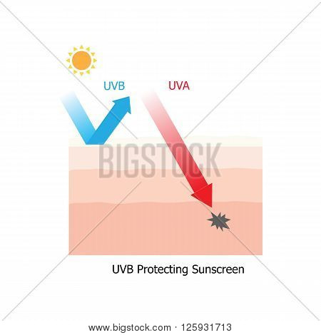 Skin with UVB tradition sunscreen protection but not have UVA protection and the demis layer of skin get damaged