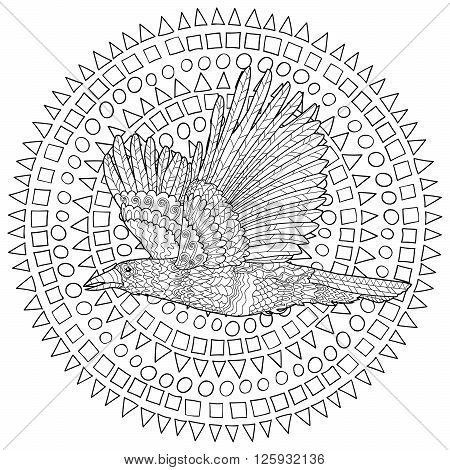 Flying raven with high details. Adult anti-stress coloring page with crow. Black white hand drawn doodle bird. Sketch for tattoo, poster, print, t-shirt in zentangle style. Vector illustration.