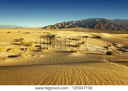 sand desert and rocky mountains in the background