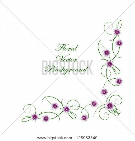 Floral vector background. Corner frame with mallow flowers isolated on white background for use in your design.