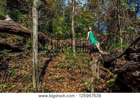Beautiful Girl In Green Dress In Woods
