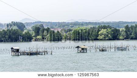 fishing farm
