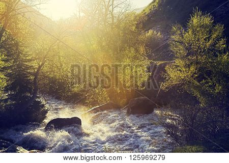 Mountain river with stones in the water