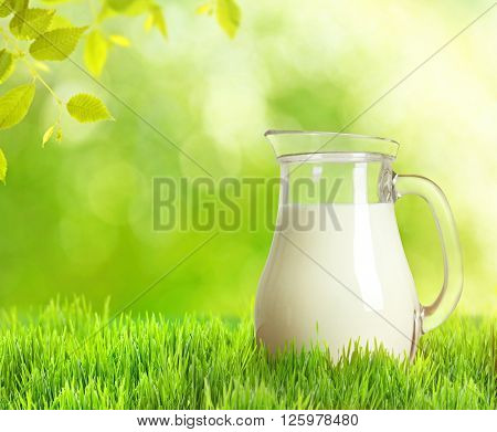 Fresh milk in jug on green nature background