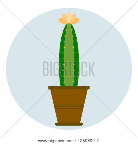 Cactus in flower pot. Cactus icon. Cartoon Cactus Illustration. Green and exotic plant. Flat style vector illustration.