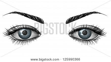 Realistic female eye close up wide open glance with eyebrows