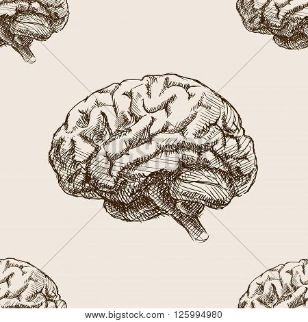 Human brain sketch style seamless pattern vector illustration. Old hand drawn engraving imitation. Brain illustration