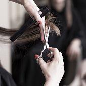 Hairdresser Cutting Hair poster
