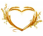 Wheat Heart design over white