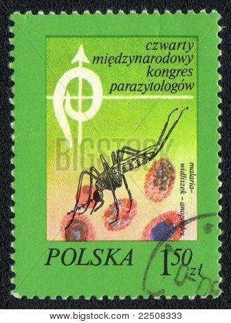 Malariamücken