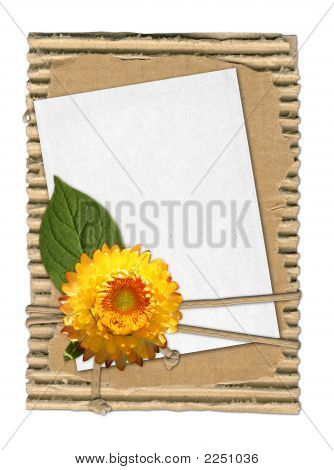 Summery Frame With Yellow Flower