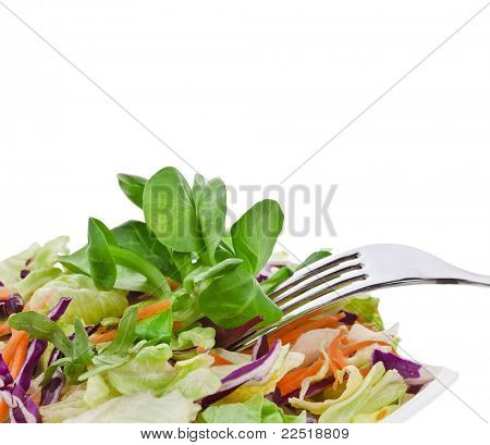 Mixed salad cabbage , lettuce with fork  isolated on white background