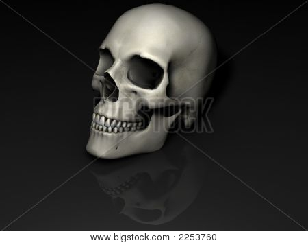 Skull_Reflection
