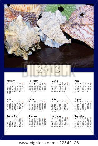 Shells And Urchins 2012 Calendar