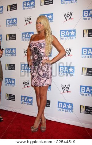 LOS ANGELES - AUG 11:  Kelly Kelly arriving at the