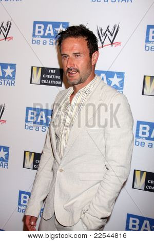 LOS ANGELES - AUG 11:  David Arquette arriving at the