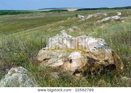 Stones In The Steppe