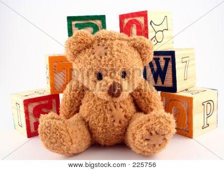Bear And Blocks